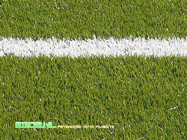 Volendam - Feyenoord 2-1 05-04-2009 (4).jpg